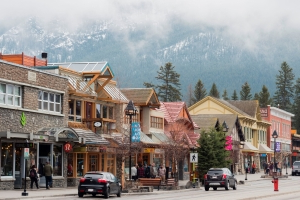 'Elk poop on every sidewalk': Animals take over main street, a sign of Banff's 'decimated' economy