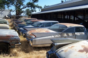 Out in Oregon, this die-hard Cadillac fanatic lives amongst his herd